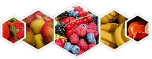 eengezondleven-be diverse-fruitsoorten