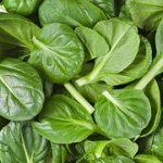 eengezondleven-be Spinazie bevat ijzer, is gezond en erg lekker!